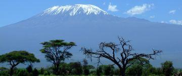 Votre agence de voyages à Saint-Omer vous propose LE KENYA - SAFARI PHOTOS & BALNEAIRE