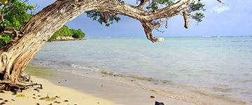 Votre agence de voyages à Saint-Omer vous propose Guadeloupe